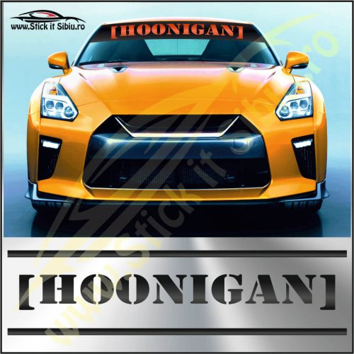 Parasolar Hoonigan - Stickere Auto
