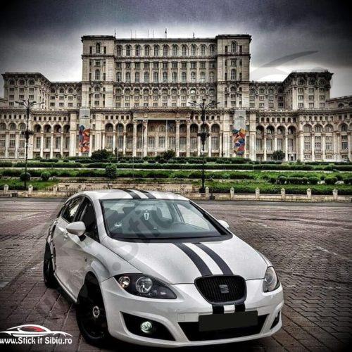 Pachet Fagure Honeycomb + Set 2 Dungi Racing - Stickere Auto