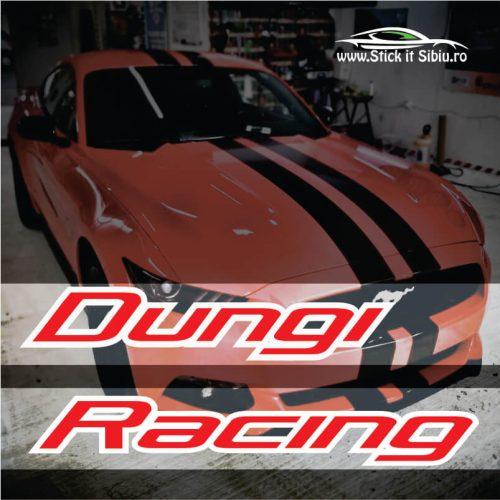Dungi Racing